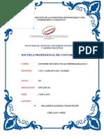 Informe de Paracticas Empresariales II