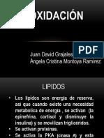 ß Oxidación Presentación