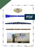 Pei Final Institucional 70678 2013