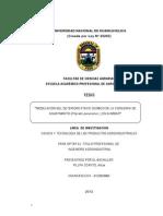 Modelacion Del Deterioro Fisico Quimico de La Conserva de Aguaymanto en Almibar