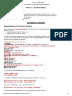 Database Startup