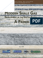 US Dept Energy Report Shale Gas Primer 2009