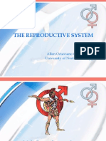 5. Reproductive Systemn