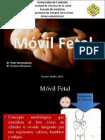 Movil Fetal 2