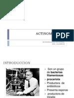 Tema 10 Actinomicetos Micro Industrial