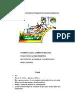 Informe de Exposicion Para Toxicologia Ambiental