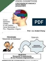 Diapositivas Procesos Cognoscitivos 5