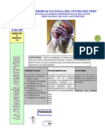 7-pedagogc3ada-conceptuall