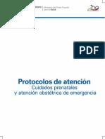 Protocolo de Atencion Prenatal y Atencion Obstetrica, Mpps