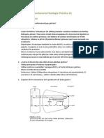 Cuestionario Fisiología Práctica 13