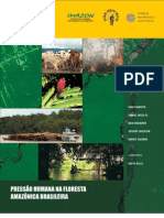pressao_humana na floresta amazonica brasileira