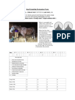 Report on Baileys hooves 13072014