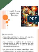 Dimensiones de La Cultura. Unidad didactica