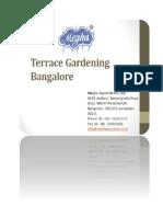 Terrace Gardening Bangalore
