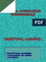 3 Anomalii Cz - Prezentare
