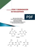 Biosintesis y Degradacion de Nucleotidos 2009