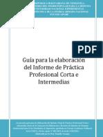 Guia Practica Profesional Corta 2012 (1)