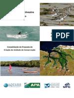 Consulta Publica 27-10-2009