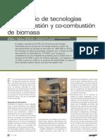 Lab Combustion Biomasa