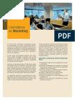 Licenciatura en Marketing