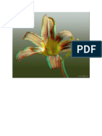 3D Picure of a flower