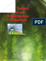 Tunnel cultivation