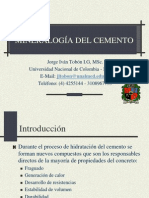 03.2-Cemento hidratado.pdf