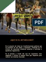 Introduccion Al Metabolismo Biol 2011