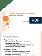 p2 - Review Looping, Percabangan Dan Array_2