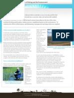 Fact Sheet - Mining and Environment