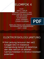 elektrofisiologi jantung(II)