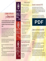 ONE BrochureInside Spanish