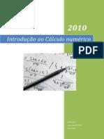 clculonumrico-100813230319-phpapp01