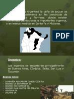 Didactica de Las Ciencias Sociales Para El Segundo Ciclo - Circuito Productivo Del Azucar