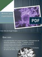 Artritis por espiroquetas.pptx