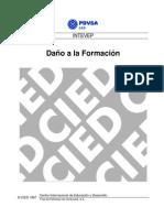 CIED PDVSA - Daño a La Formación