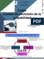 Pereira Medina, Juan. Tema 10 y 11