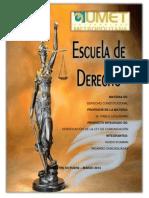 PI. CONSTITUCIONAL II.docx