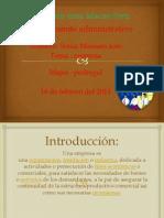 Diapositivas de Empresa