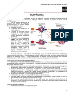 PATOLOGIA 04 - Inflamação Crônica - MED RESUMOS - Arlindo Netto