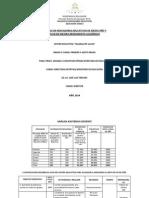 Plan Remedial 2014