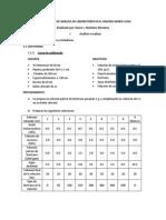 Formatos Metodologías de Análisis