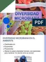 4. DIVERSIDAD MICROBIANA