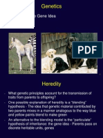 Genetics Mendel