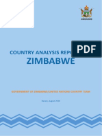 Zimbabwe Country Analysis 2010 Report 05-09-11