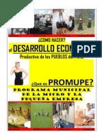 Caratula_folleto Que Es El Promupe_11!09!13_rosah