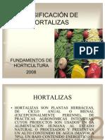 Clasificacion de Hortalizas