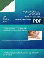 NORMA oficial mexicana NIÑOTE SANITO.pptx