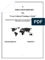 Project Report on Cross Cultural Training1
