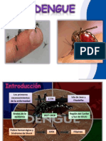 Charla Del Dengue
